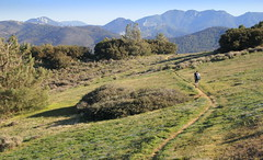 South bound on the PCT toward Sky River Ranch, CA (Damon Tighe) Tags: california ca mountains america pacific north crest trail backpacking pct tehachapi