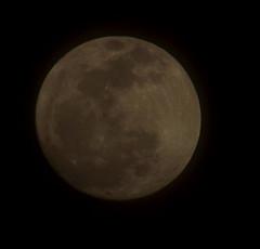 _Tonight's Moon_04242013_ 094A (VinceFL) Tags: moon luna orlandoflorida manfrottotripod lunartics vinceflnikond7k httpwwwflickrcomphotosvlopresti1964 tamron70300mmf456dild12autofocusmacro tonightsmoon04242013