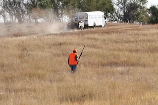South Dakota Pheasant Hunt - Pierre 11