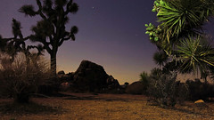 ManurePileRocks (Electricmess82) Tags: california longexposure nature night canon joshuatree climbing bloom whatever nationalparks rockclimbing g15 jtnp electricmess zombieseatyourface
