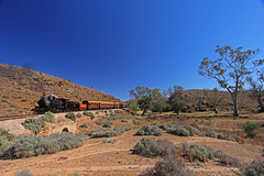 NM25 - The Afghan Express - Saltia (Wings and Wheels) Tags: railroad heritage train bush south volunteers rail railway australia historic steam ranges pichi outback locomotive southaustralia flinders preservation steamtrain quorn richi flindersranges prr pichirichi pichirichirailway railwaypreservation