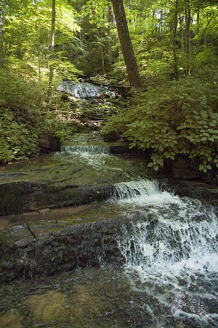 Leonard Springs Nature Park - June 2013