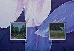 Palmer Lake Art Center Reflected Self-Portrait (ricko) Tags: selfportrait windows reflection mural flowers building me kath palmerlake colorado artcenter