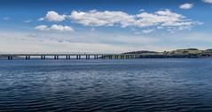 UK - Scotland - Dundee - Tay Road Bridge (Marcial Bernabeu) Tags: marcial bernabeu bernabu uk united kingdom unitedkingdom greatbritain reino unido reinounido granbretaa escocia scotland puente bridge dundee tay road