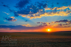 Idaho Sunset Revisited (APGougePhotography) Tags: sun sunset idaho field clouds id plains orange blue brown outside nikon d5100 lightroom adobelightroom adobe topaz topazlabs topazclarity clarity