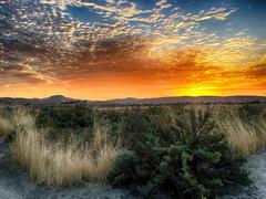 sunrise_2368 (EYEsnap_Photography) Tags: altamontcreek sunrise clouds cloudporn landscape scenic livermore