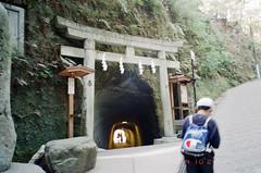 -4 (UME2nd) Tags: fujifilm japan natura classica