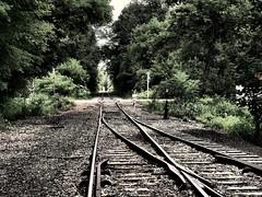 Railside Backyard (Professor Bop) Tags: professorbop drjazz olympusem1 cambridgenewyork railway track turnout switch child