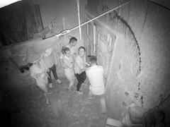 192.168.5.1-KAM 4-2016-08-24-15-48-21 (lsa666pl) Tags: basset lsa