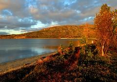 Afternoon walk (maybrittballo) Tags: afternoon sunset alta finnmark northofnorway lathar