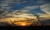 (patrickgkelly) Tags: sunset evening sky clouds grass silhouette highway14 alberta