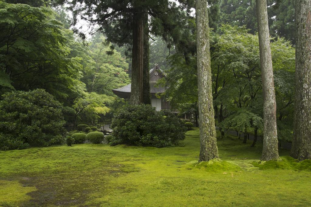 The world 39 s best photos of moosgarten flickr hive mind - Moosgarten kyoto ...