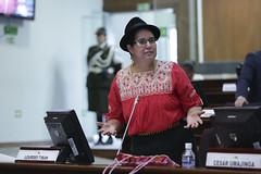 Lourdes Tibn - Sesin No. 409 del Pleno de la Asamblea Nacional / 20 de septiembre de 2016 (Asamblea Nacional del Ecuador) Tags: asambleanacional asambleaecuador sesinno409 sesin409 409 pleno sesindelpleno lourdestibn