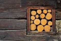 La quadrature des cercles (pictopix) Tags: wood pine circle square nikon pin board hiver nail frame round chalet marron cadre brun bois planche cercle rouille clou fente carré d3100