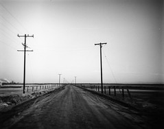 Salt Road (joshuammulligan) Tags: california road camera blackandwhite bw blur 120 film mediumformat landscape toy lomo 645 power desert toycamera salt roadtrip plastic powerlines smokestack bleak telephonepoles geothermal vignette brawley plasticcamera apocalyptic saltonsea saltflat debonair plasticlens filmphotography niland lomgraphy vanishingpiont