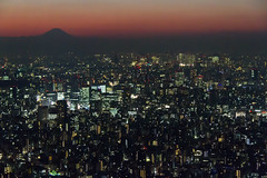 tokyo metropolis /  (llus) Tags: sunset building japan lights tokyo twilight shinjuku cityscape fuji dusk mountfuji  fujisan metropolis    mtfuji fujiyama   skytree