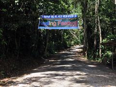 Bandilaan National Park