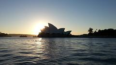 Opera House at dawn (mathias Straumann) Tags: water sunrise dawn harbour sydney operahouse sydneyharbour flickrandroidapp:filter=none