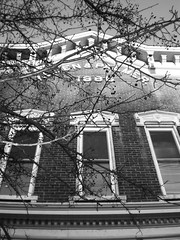 Old Brick Building (linds.ey) Tags: windows blackandwhite white black building tree brick branch branches molding casio 1160 f31 63mm