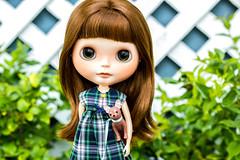 Little Miss Roberts on Montgomery Street