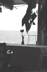 T* (ˇ Domitilla ˇ) Tags: red blur andy beautiful 50mm bokeh x bianco solex 18105 lightx retrox marex bluex colorx blackx vintagex macrox texturex whitex stonesx nikonx d7000 dofx sunx woodx nerox collinsx focalx pebblesx