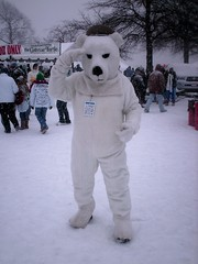 Maryland Polar Bear Plunge 2010 (SchuminWeb) Tags: bear park county winter snow storm beach swimming swim point anne costume md state ben body snowy walk web events sandy snowstorm january parks police maryland full special mascot event beaches around annapolis olympics polar storms dip arundel specialolympics 2010 walkaround dipping plunge parkland snowstorms plunging annearundel schumin schuminweb