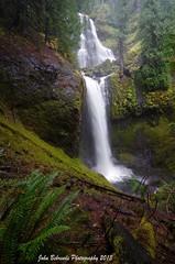Falls Creek Falls (John Behrends) Tags: trees waterfall pentax hike falls trail ferns giffordpinchotnationalforest pentaxk01