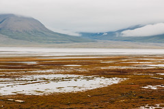Arctic Tundra XI (danielfoster437) Tags: adventure arctic arcticcircle arcticsummer arctictundra extremeterrain landscape mountain nature outdoors spitsbergen summer svalbard svalbardsummer terrain tundra wilderness