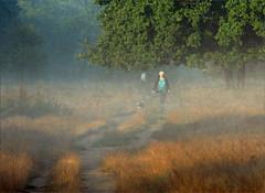 . (me*voil - away in October) Tags: hannover altebult landscape dogwalker autumn