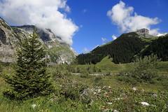 Bargis (winkler.roger) Tags: bargis valley flims fidaz grison switzerland landscape mountain