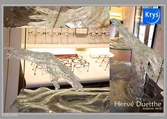 bouticart2016-(87) (gerbor) Tags: boutiquart plein phart gisors artiste artcontemporain sophiepatry jeanlouischoquet louis louistartarin disouch didouch sandrinerastelli laplusbelleartisteconnuecejour claudeemiletexier carolina sali anthonycaseiro sylvietraverse alexdeoliveira pierremarcel claudecaron nicolasdumas pascalcatry chantaltichit lorena lorenamatyjaszczyk nathaliegioria brigittebreyton severineassoun philippebarluet louisebrun stephaniedamiensdhebecourt frederiqueburel xavierblondeau patriciaallaisrabeux jeanpierreregnault gerald gerbor geraldgisors geraldfoci geraldfocinet geraldfocigisors nikon d3s