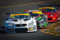 Lap 1 - BMW M6 GT3 (CGiMagery) Tags: mercedesamggt3 ferrari488gt3 bmwm6gt3 smp101 sydneymotorsportpark australian gt australia colour color technicolor rainbow gt3 enduro 2016 nikon cgimagery d200 sigma150500mm iamthespeedhunter martini martinistripe m m6 pirelli australiangt green red pink grey yellow black white pilot helmet driver racecardriver sunshine glare