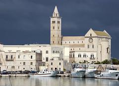 Trani (albireo 2006) Tags: trani puglia cathedral italy italia harbour