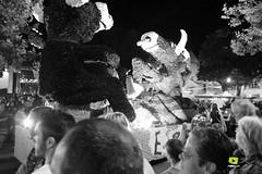 Corso-Fleuri-Selestat-2016-89.jpg (valdu67photographie) Tags: alsace corsofleuri selestat 2016 nuit international basrhin expositions fanabriques fanabriques2016 lego rosheim visite
