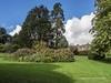 Clyne Gardens 2016 09 30 #7 (Gareth Lovering Photography 3,000,594 views.) Tags: clyne gardens botanical swansea wales flowers trees shrubs park olympus stylus1s garethloveringphotography