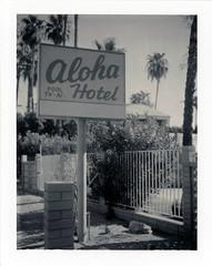Palm Springs, CA (moominsean) Tags: polaroid 190 instant type664 expired082005 california palmsprings desert southwest midcentury alohahotel