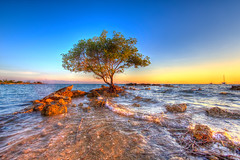 Hope (Tralphe XY) Tags: sunset sea tree beach nature water its canon fun eos philippines ngc m more hdr calatagan mirrorless