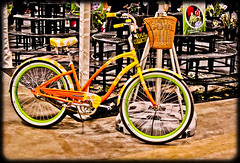 Bike (A Great Capture) Tags: show toronto ontario canada green floral bike bicycle yellow garden colorful basket gardening vivid transportation colourful benches on homeshow canadablooms ald ash2276 ashleyduffus wwwashleysphotoscom