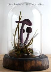 the darker corners (lilfishstudios) Tags: glass mushrooms moss purple felting fungus needlefelting fiberart terrarium sporophytes lisajordan