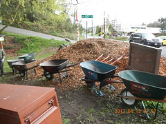 Pitchforks and Wheelbarrows (Holy Outlaw) Tags: seattle community parks restoration urbanforest nativeplants workparties earthcorps seattleparks northbeachpark urbanrestoration friendsofnorthbeachpark