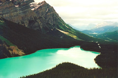 Peyto Lake, Banff National Park (Theo Hartman) Tags: mountain lake canada columbia banff british