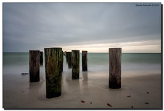 Naples' Old Pilings on a Gloomy Day (Fraggle Red) Tags: ocean wood longexposure sunset gulfofmexico clouds evening sand florida naples poles pilings canonef1740mmf4lusm stormclouds oldpier singleexposure nd110 collierco 10stopndfilter adobelightroom41 adobephotoshopcs6