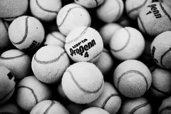 "Day: Seventy Five ""Like a Pro"" (espressoDOM) Tags: bw stilllife ball photography blackwhite balls tennis photoaday penn pro 365 tennisball gym cherryhill uspta protennis ilovebw iloveblackwhite penn1 365daysofphotos 3652013"