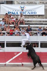 Arles Bull Runners 5 (drewlawrence.co.uk) Tags: portrait france provence arles romanamphitheatre bullrunning
