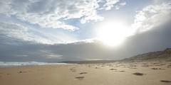 Footprints (Dr Ting) Tags: beach sandy footprints