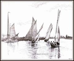 A SAILING MATCH (Norfolkboy1) Tags: england penink pointillism horning norfolkbroads originaldrawing riverbure panthonybromage