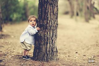 Fear baby tree