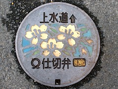 Sukumo city Kochi pref,manhole cover 2 (MRSY) Tags: flower japan geotagged  manhole  kochi   sukumo   geo:lat=3293926431021176 geo:lon=13272656366229057