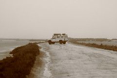 Land of Camargue (fuffy_ge) Tags: white black rain rover lagoon land camargue seppia