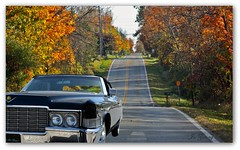They Call Me Christine! (✿✿Jo Zimny Photos✿✿) Tags: black car christine rogue stephenking caddy joyride nodriver nikkor1855mmlens nikond5100